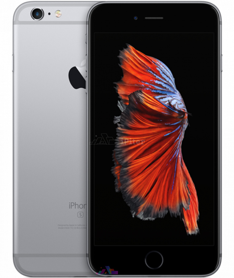 Фото Купить Apple iPhone 6s Plus 32Gb<br> Space Gray (MN2V2)