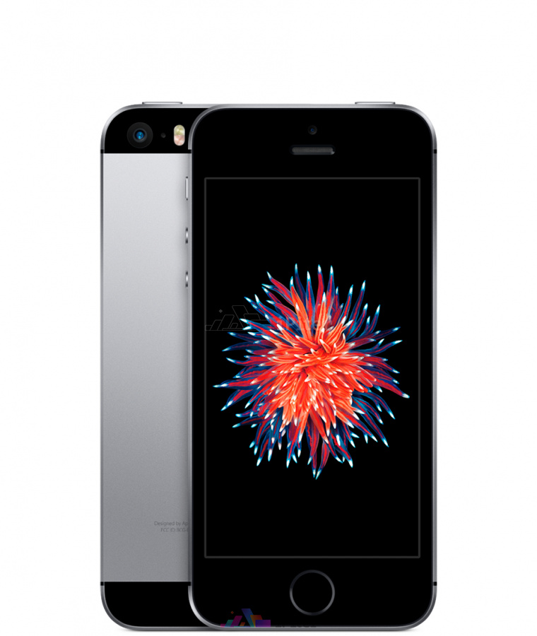 Фото Купить Apple iPhone SE 64Gb<br> Space Gray (MLM62RU/A)